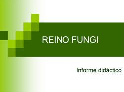 Reino Fungi informe de hongos